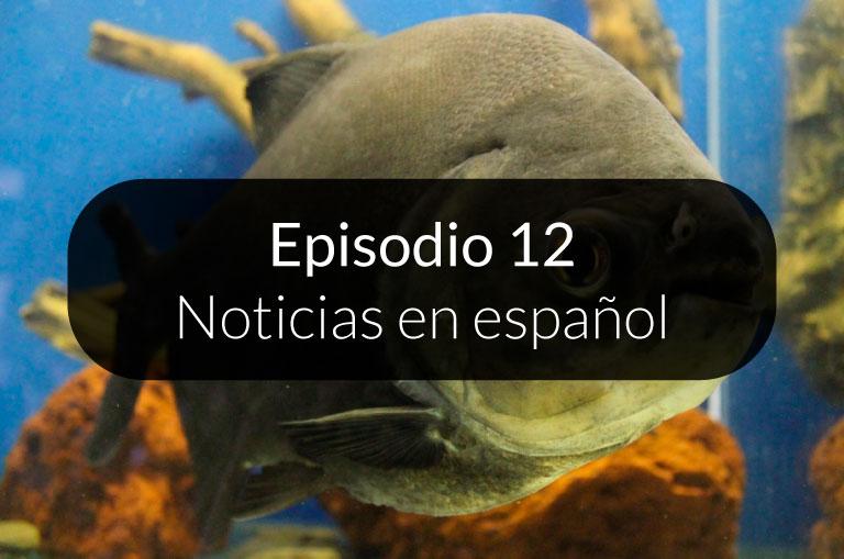 12. Noticias en español