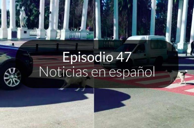 47. Noticias en español