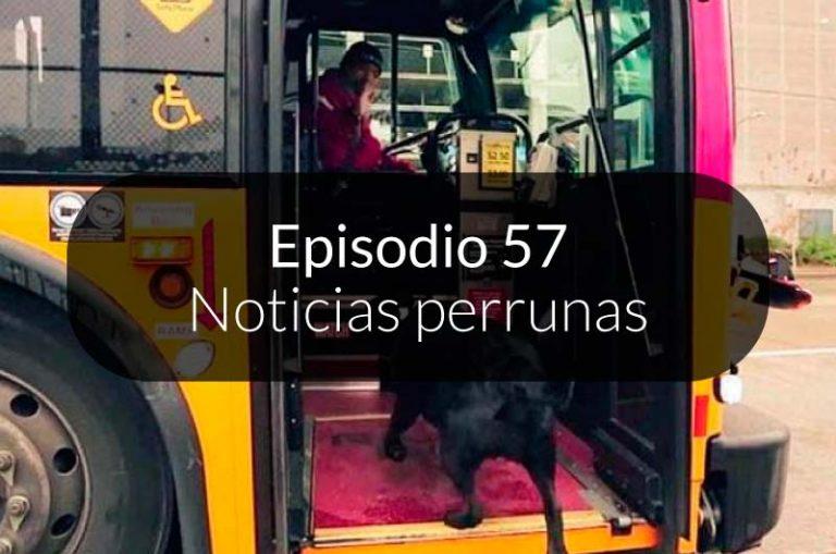 """57. Noticias """"perrunas"""" en español"""