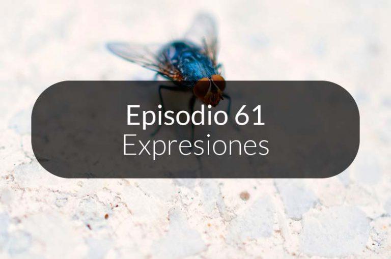 61. Expresiones