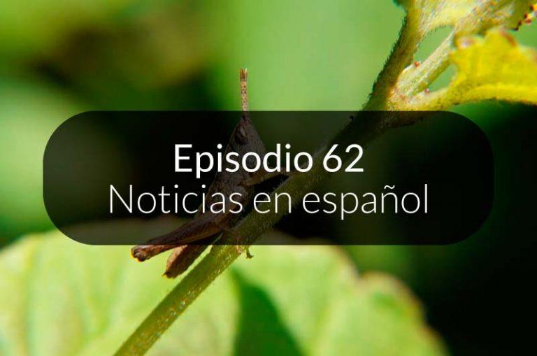 62. Noticias en español