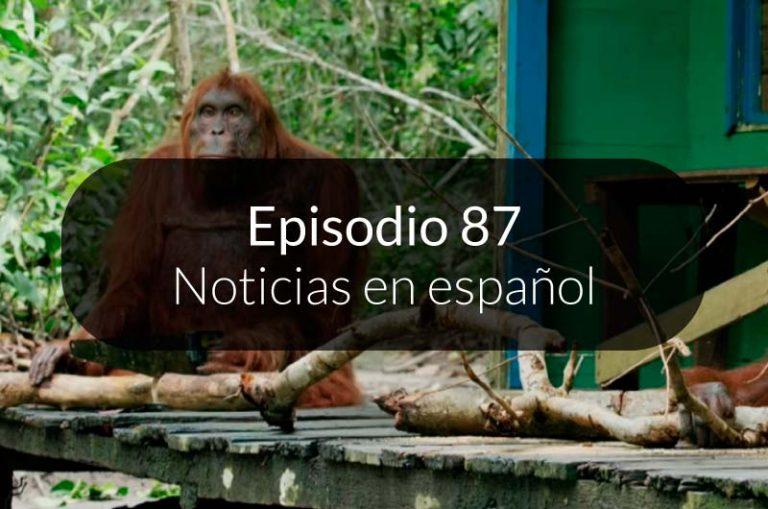 87. Noticias en español
