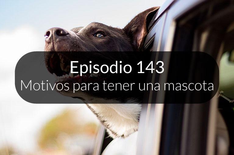 143. Motivos para tener una mascota