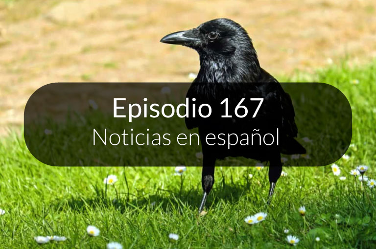 167. Noticias en español