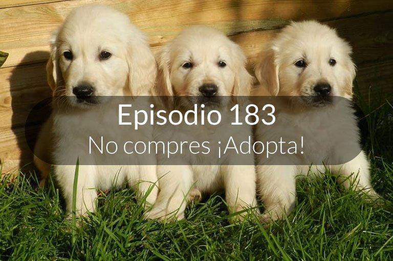 183. No compres ¡Adopta!