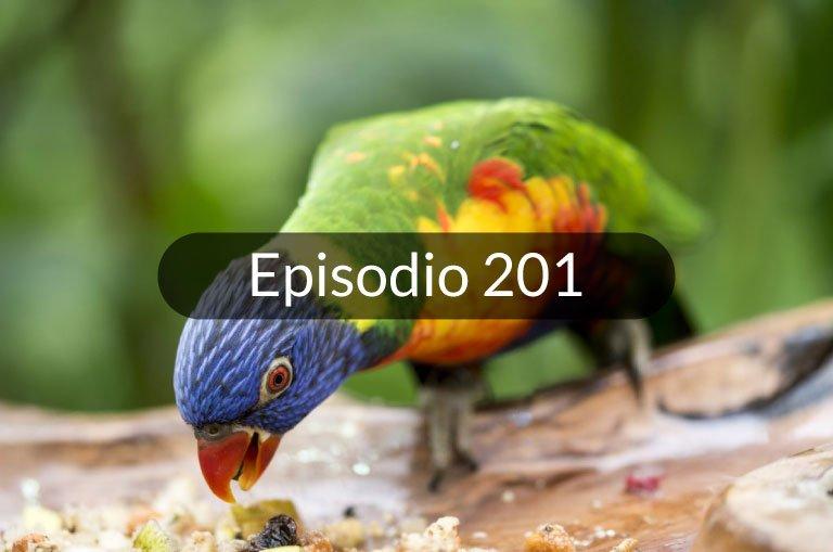 201. Expresiones en español