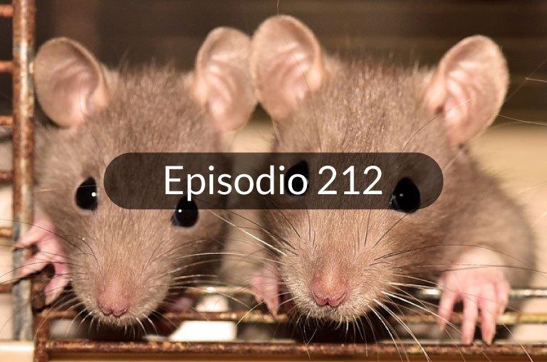 212. Noticias en español