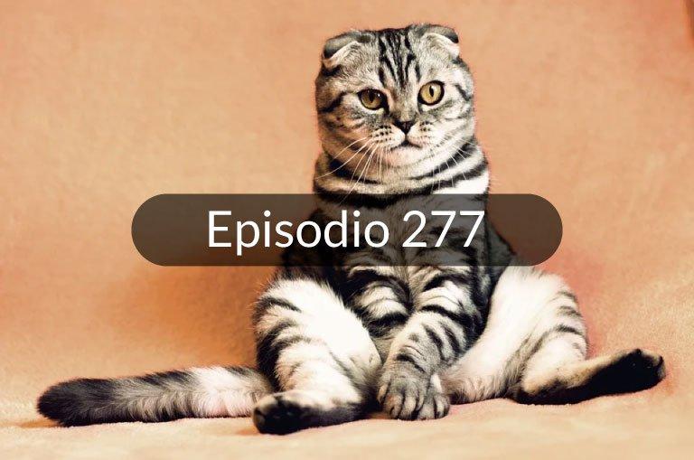 277. Noticias en español