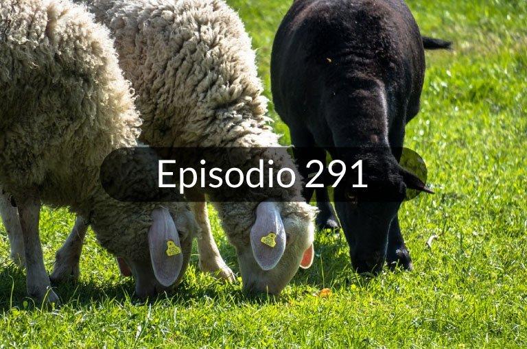 291. Expresiones en español