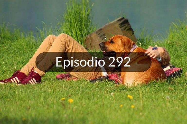 292. Noticias en español