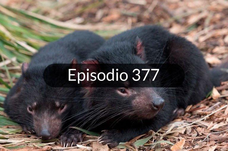 377. Noticias en español